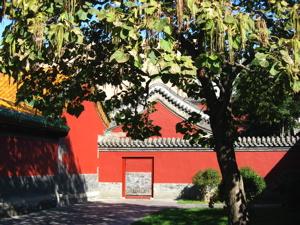 Shenyang Palace